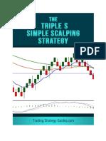 Triple S Strategy.en.Es