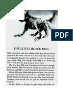 A Litte Black Dog