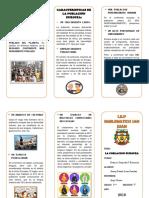 PDF- Triptico -Poblacion Europea