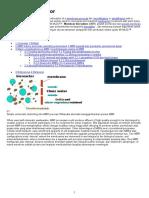 Membran bioreaktor