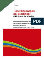 Deivid Akd Das Microalgas Ao Biodiesel