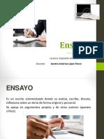 Presentacic3b3n