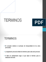 PP Términos