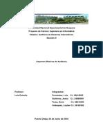 Aspectos Básicos de Auditoria. Sección II