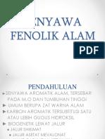 4. Senyawa Fenolik Alam Ppt