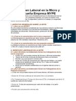 Régimen Laboral en La Micro y Pequeña Empresa MYPE