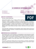 Guion Comercio Internacional 20131