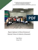 Raport-deplasare-la-Moara-Domnească.docx