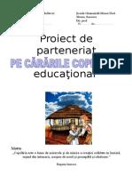 Parteneriat Educational
