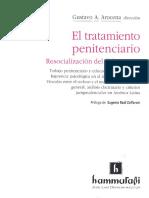 Introduccion Al Derecho Penal Nicaragüense1
