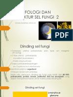 Morfologi Dan Struktur Sel Fungi 2