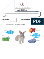 Guía Evaluada de Primero Animales