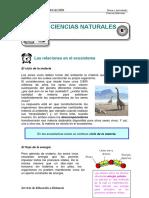 3lasrelacionesenelecosistema-140427134535-phpapp02.pdf