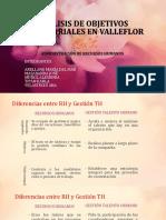 Análisis de Objetivos Empresariales en Valleflor
