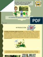 Biología Celular y Su Función en Las Plantas