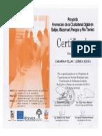 Certificado Cedro