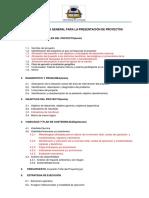 ESTRUCTURA GENERAL PARA LA PRESENTACIÓN DE PROYECTOS nicolas.docx