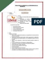 Campaña Promocional Para El Candidato a La Presidencia de La República 4p