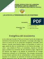 Energética del ecosistema.pptx