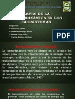 Leyes de la termodinámica en los ecosistemas.pptx