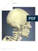Working with the TMJ, Part I (Myofascial Techniques)