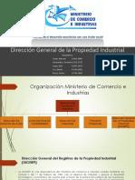 DIGERPI.pptx