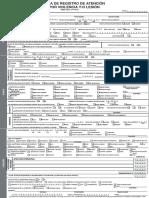 LESIONES_formato SINBA 17 2017.docx