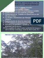 Alternativas de Conservación