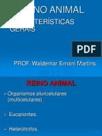 281_735Invertebrados.ppt