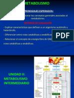 10 Metabolismo KO 08-09-2015
