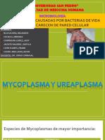 Mycoplasma y Ureaplasma