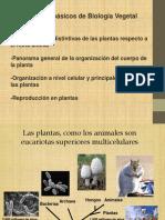 Clase Biologia Vegetal (Dr. a. Goldraij) 2018