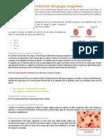 Determinación Del Grupo Sanguíneo y Antigenos de Los Grupos Sanguineos