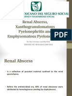 Absceso Renal, Pielonefritis Enfisematosa y Xantogranulomatosa Expo Coutiño Ok Ok