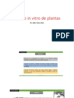 Clase 4. Cultivo in Vitro Historia Caracts.