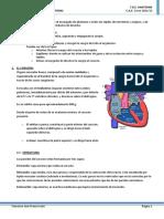 ANA_TEMA+7_+Sistema+Cardiocirculatorio