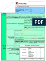 Resumo de Semiologia - Ecotoscopia - PHYM
