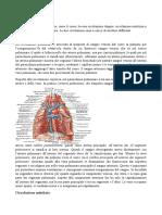7.Anatomia. 12-03-14