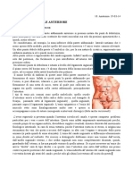 10. Anatomia. 19-03-14