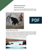 Marco Teorico Criadero de Gallo de Pelea