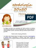 Metodología 20 x 20