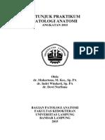 234156_buku praktikum pa 2015.pdf