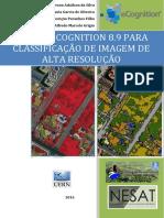 Ecognition - Livro Final(1)
