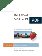 Informe Visita Planta