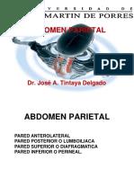PARED ABDOMINAL JATD (2).ppt