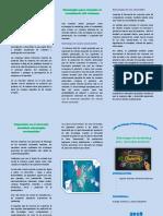Triptico Sobre Estrategias Para Mantener La Participación Actual en El Mercado