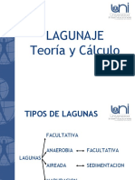 12.03 Laguas Teoria y Calculo
