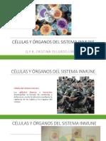 2.1. Células Del Sistema Inmune