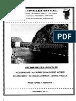 Studiu de Fezabilitate - Drum Motesti- Solomenesti p.scrisa