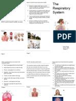 copy of brochure template
